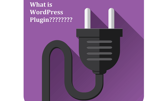 what is plugin in wordpress