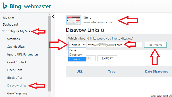 Disavow in bing webmaster tools